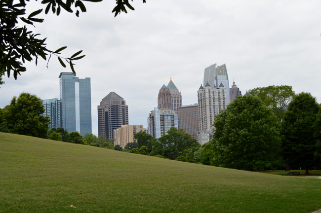 skyline with grass