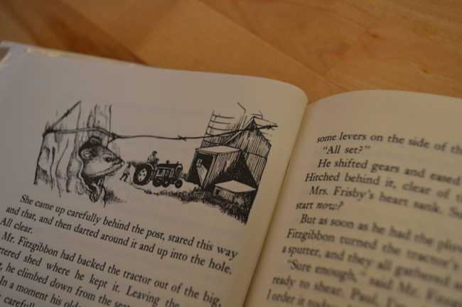 Newbery Review # 51 (Mrs  Frisby and the Rats of NIMH, O'Brien, 1972